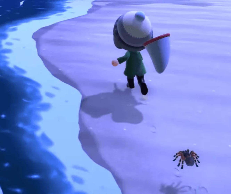 tarantula island at night